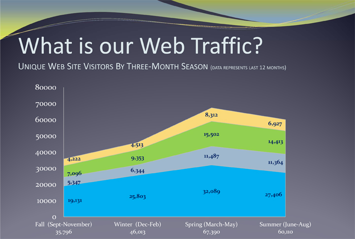 web traffic graphic analytics